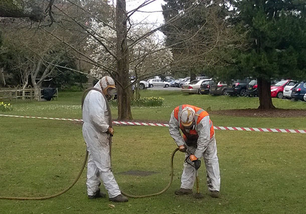 Tree contractors working with the air spade at Appletree Court in Lyndhurst